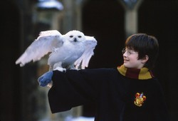 harry potter 2 3
