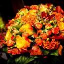 Цветочный карнавал